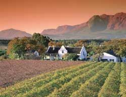 Wilderness and Winelands